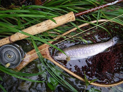 080927 Fishing ~4.jpg