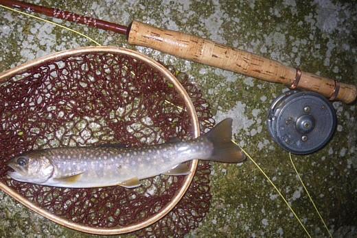 080927 Fishing ~6.jpg