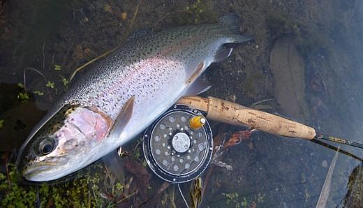081229 Fishing.jpg