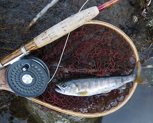 100424 Fishing.jpg