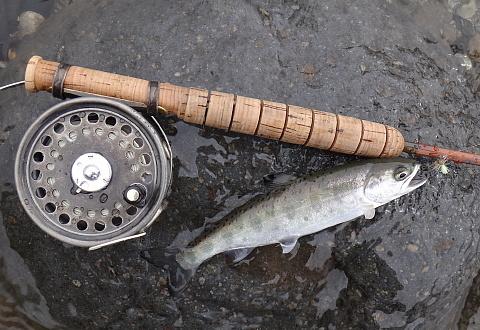 130406 Fishing.jpg