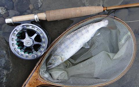 140524 Fishing ~1.jpg