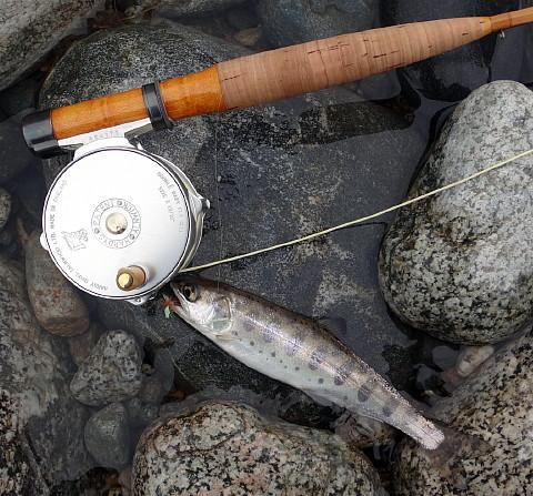 160320 Fishing.jpg