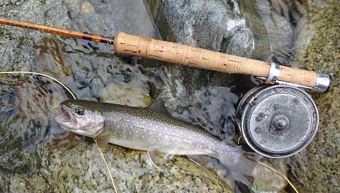 160702 Fishing ~1.jpg