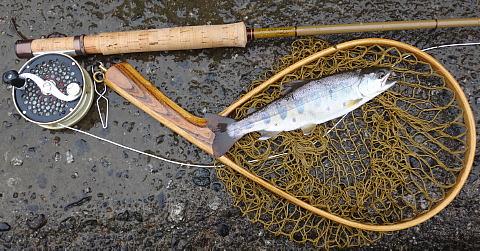 170513 Fishing ~1.jpg