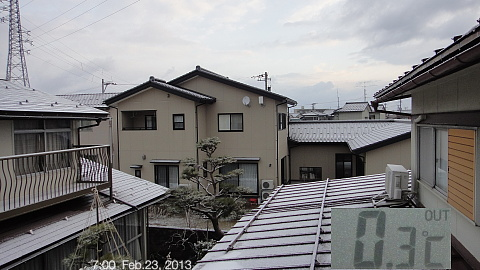 SnowedScene 130223-0700.jpg