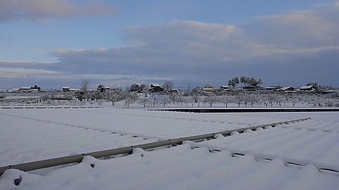 SnowedScene 140119-1630.jpg