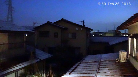 SnowedScene 160226-0550.jpg