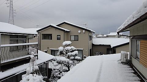 SnowingScene140308-0745.jpg