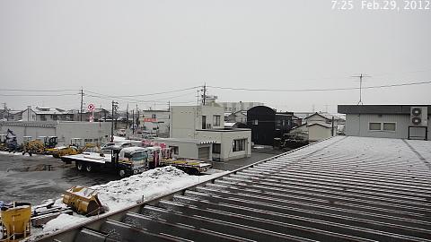 SnowingScene 120229-0725.jpg