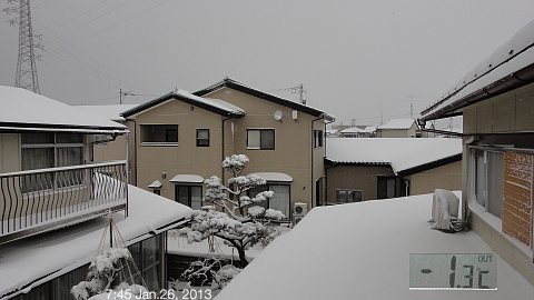 SnowingScene 130126-0745.jpg