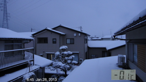 SnowingScene 130128-0645.jpg