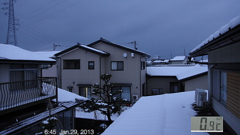 SnowingScene 130129-0645.jpg