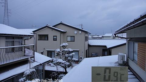 SnowingScene 130222-0630.jpg