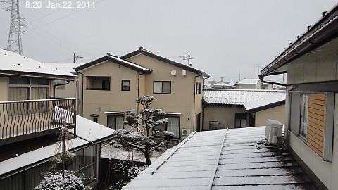 SnowingScene 140122-0820.jpg