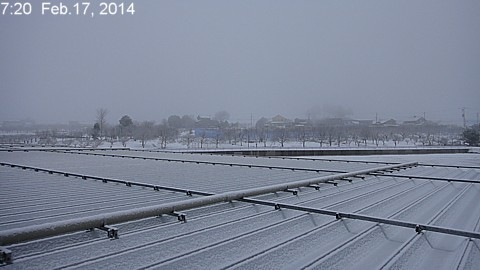 SnowingScene 140217-0720.jpg