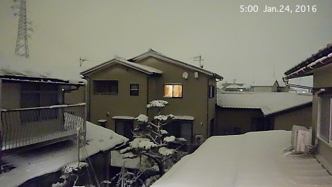 SnowingScene 160124-0500.jpg