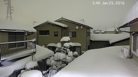 SnowingScene 160125-0540.jpg