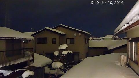 SnowingScene 160126-0540.jpg
