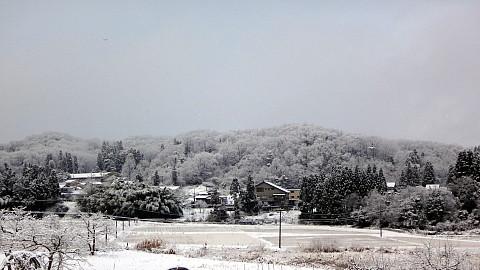 SnowingScene 170111-0740-1.jpg