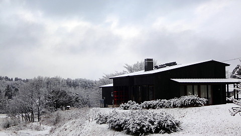 SnowingScene 170111-0740-2.jpg