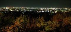 081123 NightSight.jpg