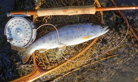 150727 Fishing ~2.jpg
