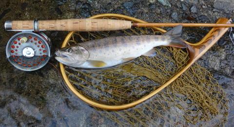 160917 Fishing 1.jpg