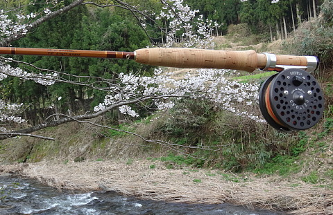 170414 Fishing ~1.jpg