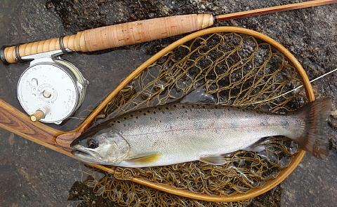 170617 Fishing ~2.jpg