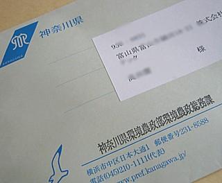 100325 SyonanGold ~1.jpg
