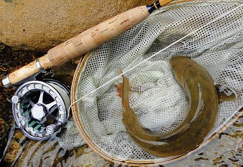 120503 Fishing ~1.jpg