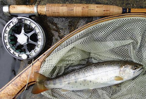 120617 Fishing ~1.jpg