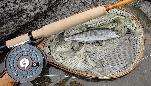 140316 Fishing.jpg