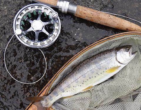 140628 Fishing ~1.jpg