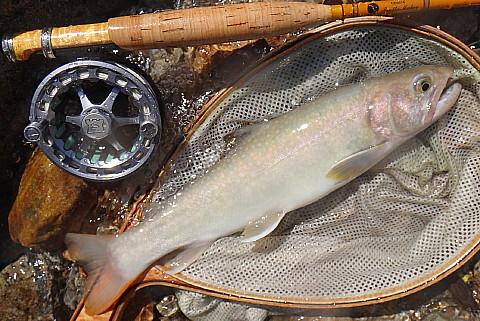 140712 Fishing ~3.jpg