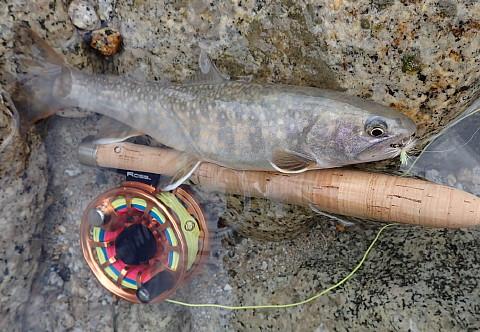 140927 Fishing ~1.jpg
