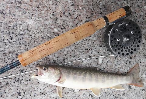 160710 Fishing ~1.jpg