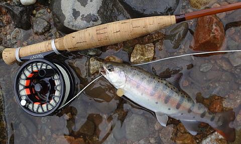 170904 Fishing.jpg