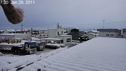 SnowedScene 110129-0720.jpg