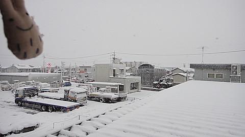 SnowingScene 101227-0730.jpg