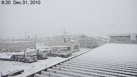 SnowingScene 101231-0920.jpg