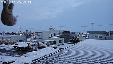 SnowingScene 110125-0710.jpg