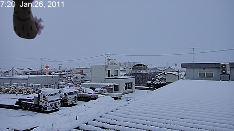 SnowingScene 110126-0720.jpg