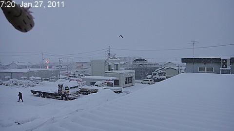 SnowingScene 110127-0720.jpg