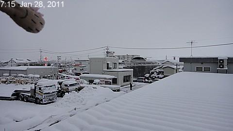 SnowingScene 110128-0715.jpg