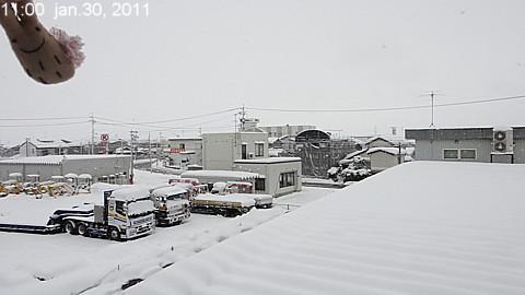 SnowingScene 110130-1100.jpg