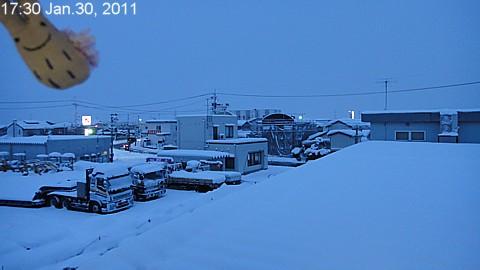 SnowingScene 110130-1700.jpg
