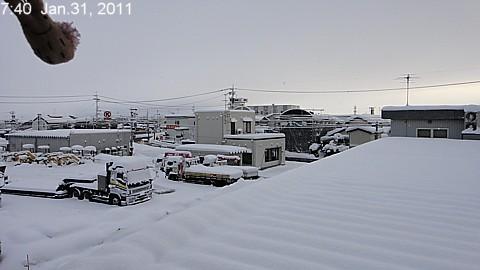 SnowingScene 110131-0740.jpg