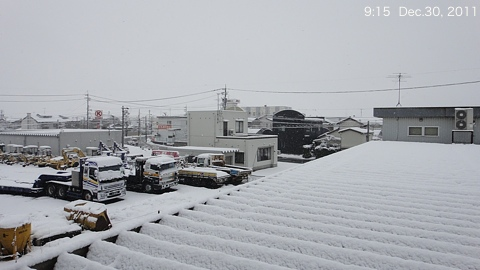 SnowingScene 111230-0915.jpg